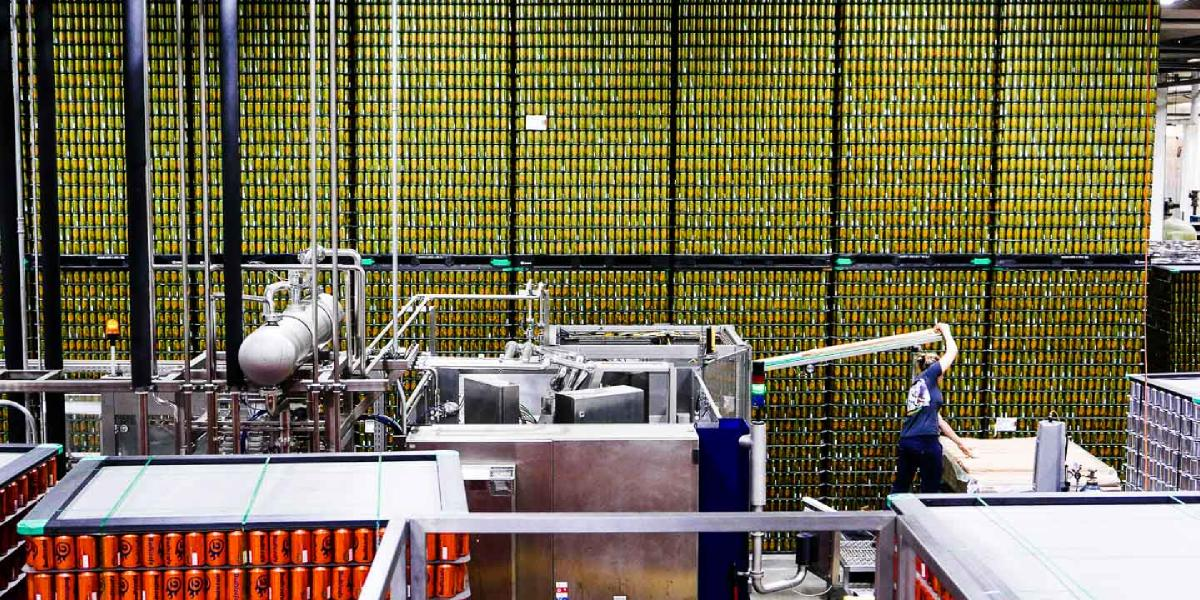 A wide shot of the canning area showing many rows and stacks of empty cans waiting to be filled